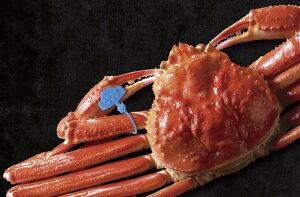 【ふるさと納税】【期間限定】茹で津居山かに(800g〜1000g)×1匹 / カニ 蟹