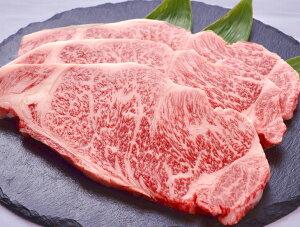 【ふるさと納税】極上但馬牛サーロインステーキ【500g】 / 肉 牛肉