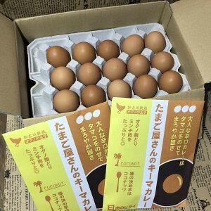 【ふるさと納税】オクノの卵とたまご屋さんのキーマカレーセット