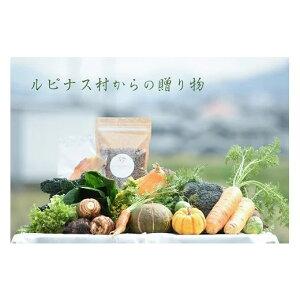 【ふるさと納税】自然栽培や地元野菜・グラノーラ・乾燥野菜やドライフルーツ