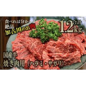 【ふるさと納税】国産牛 焼肉用(ハラミ・サガリ)1.2kg
