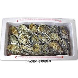 【ふるさと納税】【2021年1月以降順次発送予定】赤穂産かき(殻付き2.5kg) 【魚貝類/生牡蠣/かき・カキ・シーフード】 お届け:2020年11月下旬〜2021年3月下旬