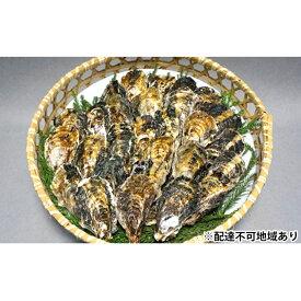 【ふるさと納税】坂越かき 殻付き(25個〜30個) 【魚貝類/生牡蠣/かき・カキ・シーフード】 お届け:2020年12月1日から2021年3月12日まで