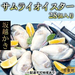 【ふるさと納税】坂越かき 殻付き27個(牡蠣ナイフ・軍手付き)サムライオイスター 【魚貝類・生牡蠣・かき・カキ・シーフード】 お届け:2020年1月〜2020年4月末