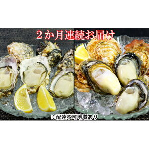 【ふるさと納税】【4月・5月お届け】レア牡蠣2種食べ比べ(播州赤穂坂越産) 【定期便・魚貝類・生牡蠣・かき】 お届け:2020年4月1日〜2020年5月31日