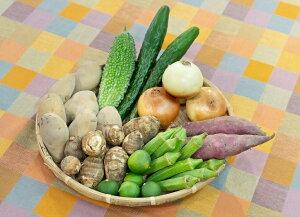 【ふるさと納税】【旬のお野菜詰め合わせセットA】農産物直売所「北はりま旬菜館」からお届け!