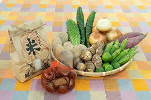 【ふるさと納税】【旬のお野菜&お米2kg詰め合わせセットB】農産物直売所「北はりま旬菜館」からお届け!