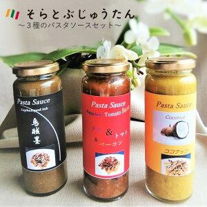 【ふるさと納税】3種のパスタソースセット 〜お店の味がご自宅で味わえます♪〜