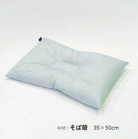 【ふるさと納税】アース製薬と共同開発!防ダニ枕【Dani Not】そばがら 35×50