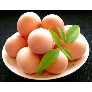 【ふるさと納税】名古屋コーチン産みたて朝採れ卵20個と手作りシフォンケーキ1ホール