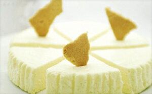 【ふるさと納税】プレミアムニューヨークチーズケーキ(1ホール)