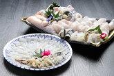 【橋詰鮮魚】淡路島3年とらふぐ鍋セット(白子付)3〜4人前