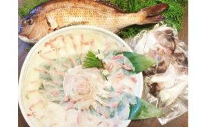 【ふるさと納税】25)真鯛の切身【1匹丸ごと】淡路島産真鯛の切り身(2〜4人前) 刺身・しゃぶしゃぶでどうぞ♪