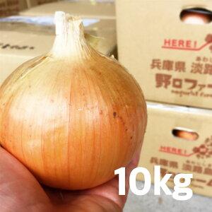 【ふるさと納税】淡路島野口ファームの完熟たまねぎ10kg