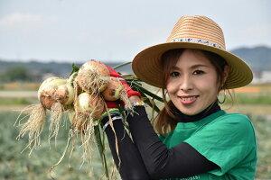 【ふるさと納税】淡路島玉ねぎ 子供達も大好き!! あま〜い玉ちゃん10kg