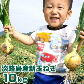 【ふるさと納税】【新玉予約】淡路島産 新玉ねぎ 10kg