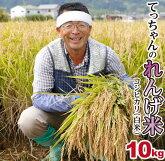 【ふるさと納税】2019年収穫南あわじ市松帆産てっちゃんのれんげ米コシヒカリ10(白米)