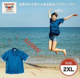 【ふるさと納税】ONOKORO ALOHA【2XLサイズ】