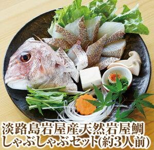 【ふるさと納税】淡路島岩屋産天然岩屋鯛しゃぶしゃぶセット(約3人前)