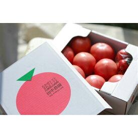 【ふるさと納税】AP2 田中農園自慢のトマト大玉4kg