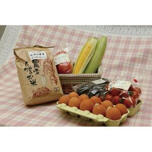 【ふるさと納税】31-H1 つちのこクラブお野菜セット