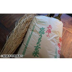 【ふるさと納税】《特別栽培米》日本酒に合うヒノヒカリ 玄米30kg(分搗き選択可能) 【お米・ヒノヒカリ・玄米・米・無洗米・30kg】