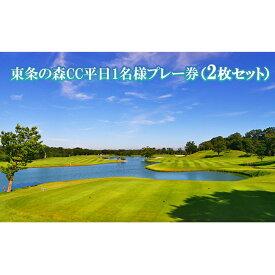 【ふるさと納税】東条の森CC平日1名様プレー券(2枚セット) 【ゴルフ場利用権・1名様・ゴルフ】