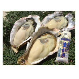 【ふるさと納税】H-12 室津産殻付き牡蠣&むき身 ※殻付き2キロ、むき身500グラム×1  配送期間:2020年12月〜2021年3月