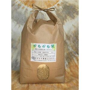【ふるさと納税】H-37 合鴨農法かもかも米(玄米4.5キロ)
