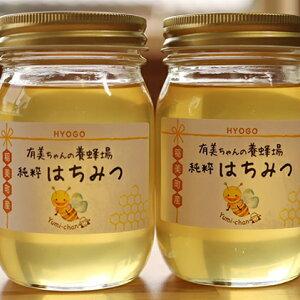 【ふるさと納税】【五つ星ひょうご認定商品】有美ちゃんの養蜂場の純粋はちみつ 600g 2個セット 【蜂蜜・ハチミツ】