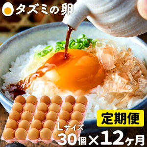 【ふるさと納税】060AB01N.タズミの卵Lサイズ(30個×12ヶ月)