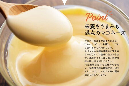【ふるさと納税】011AC02N.卵黄で作ったこだわりのマヨネーズ10個