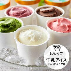 【ふるさと納税】010AE02N.アイスクリーム詰め合わせ(10個)