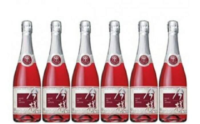 【ふるさと納税】G-11 辰巳琢郎さんプロデュース スパークリングワイン「今様」