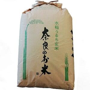 【ふるさと納税】ひのひかり(奈良県天理産) 玄米30kg【令和元年産】(一等米)【1085320】