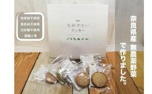 【ふるさと納税】大和やさいクッキー(40枚入)【奈良県産無農薬野菜を使用】