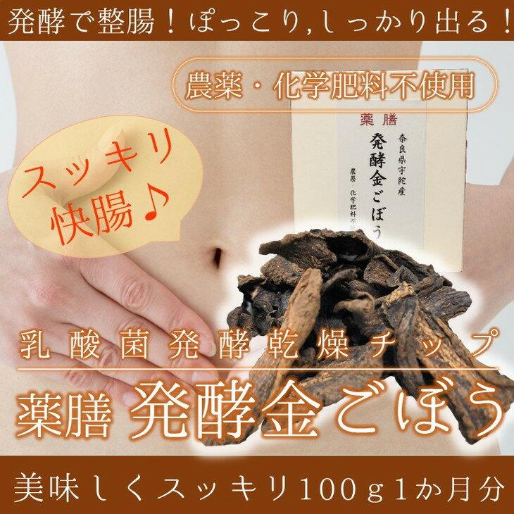 【ふるさと納税】薬膳 乳酸菌発酵 金ごぼうチップ 100g (1か月分)