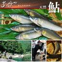 【ふるさと納税】天然鮎450g(5〜6匹)