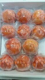【ふるさと納税】冷蔵富有柿 日本野菜ソムリエ協会大賞受賞品(12〜13個)※着日時はご指定いただけません12月中旬から1月上旬順次発送予定です