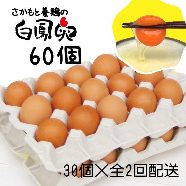 【ふるさと納税】【定期便】さかもと養鶏の白鳳卵60個(30個入×全2回配送)