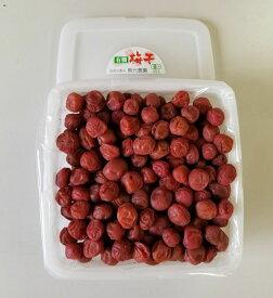 【ふるさと納税】有機栽培 小梅しそ漬け梅干1kg