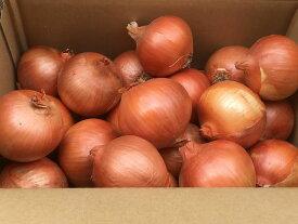 【ふるさと納税】生命の農法(無化学農薬・無化学肥料栽培)玉ねぎ 5kg