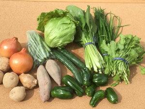 【ふるさと納税】生命の農法(無化学農薬・無化学肥料栽培)季節の野菜セット