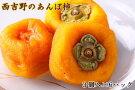 (無添加)西吉野産のあんぽ柿(18個)