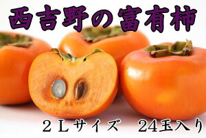 【ふるさと納税】[本場の柿]奈良・西吉野の富有柿24玉入り(2Lサイズ)※11月初旬〜11月下旬発送予定