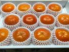 富有柿(12個入り)