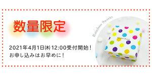 【ふるさと納税】幻の「レインボーラムネ」2箱