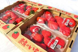 【ふるさと納税】奈良県産いちご『古都華』『あすかルビー』約640g×2箱(各2パック)