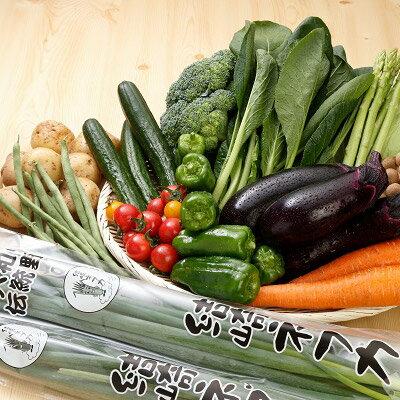 【ふるさと納税】【定期便】季節の地元野菜詰め合わせセット (年2回)