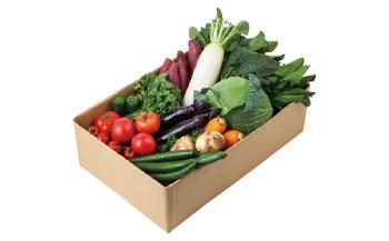 【ふるさと納税】【定期便】曽爾高原野菜を6か月連続でお届けします